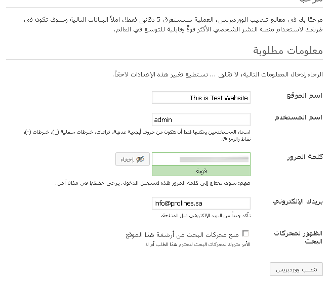 after-install-arabic-wordpress-information