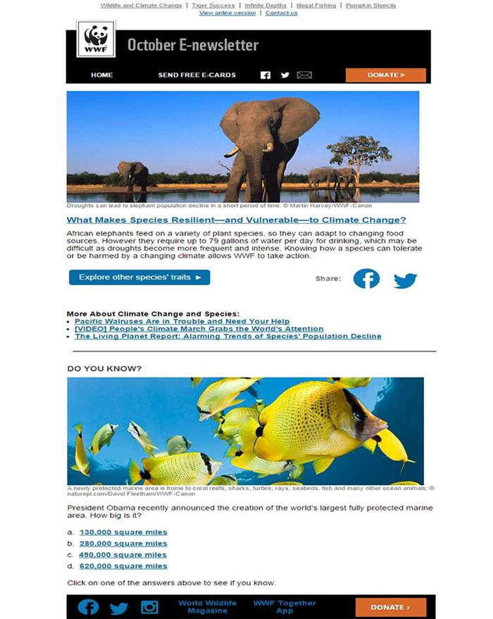 entertainment-website-email-newsletter