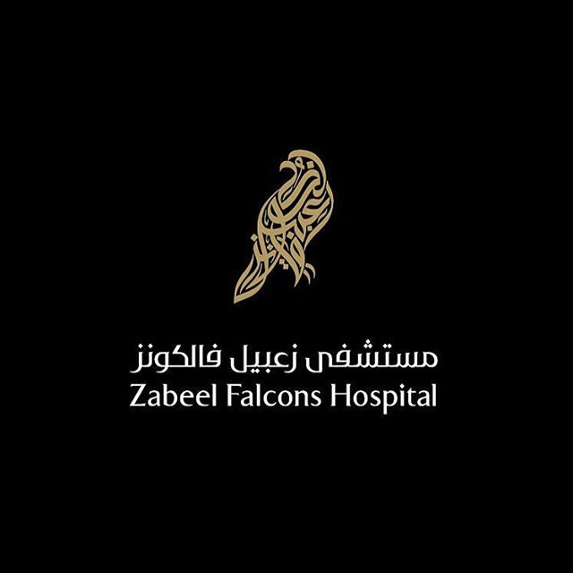 zabeel falcons hospital logo