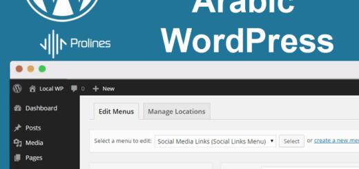Prolines | Best Web Design & Graphic Design Company Jeddah, Riyadh