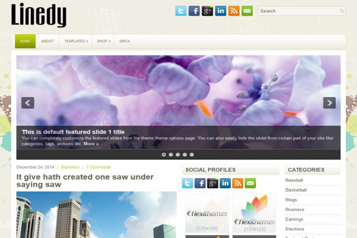 linedy-wordpress-theme-download-free