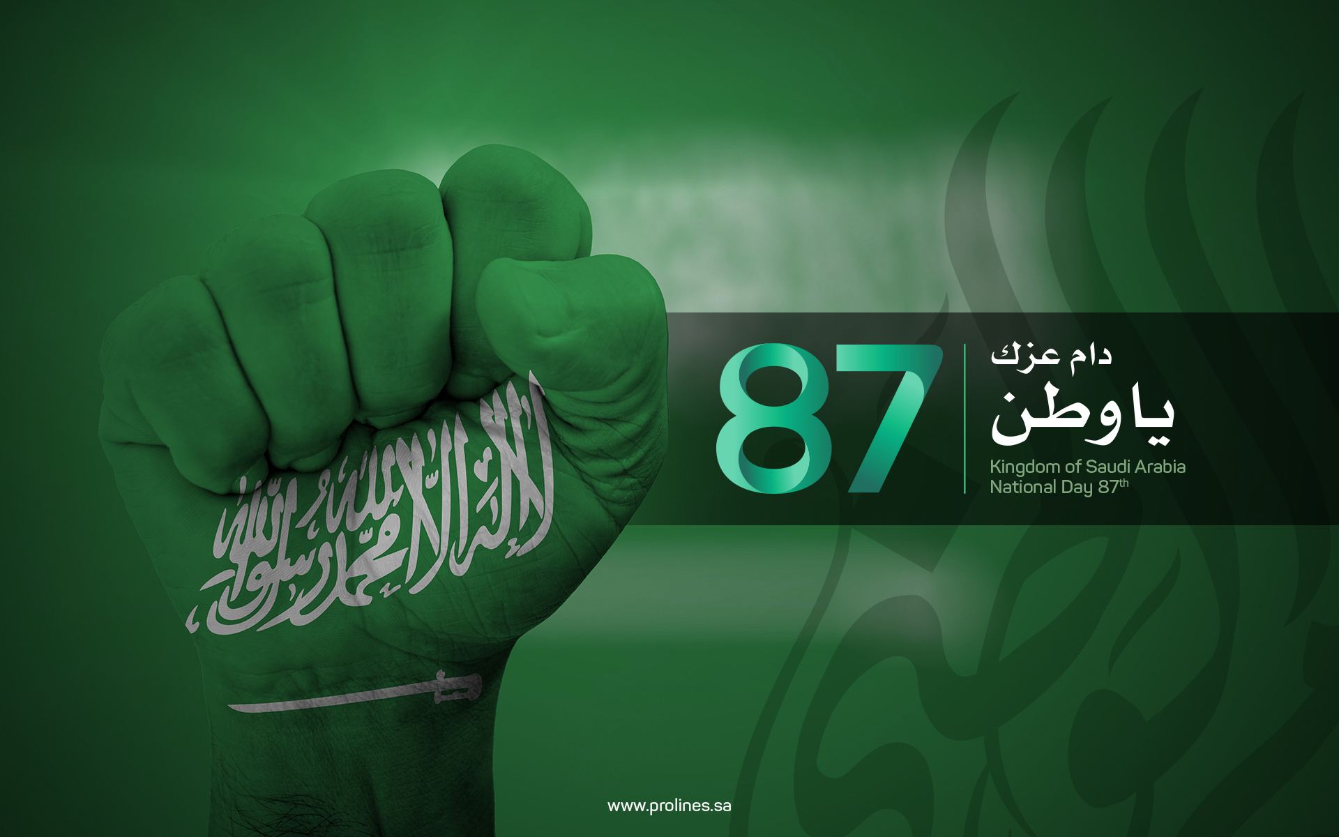 Saudi National Day 2017 Wallpapers Prolines